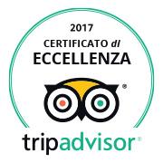 TripAdvisor - COE 2017